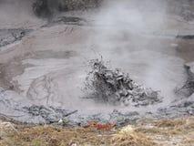 Boiling Mud. Pools in Roturua, New Zealand Stock Image