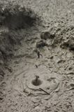 Boiling Mud II Royalty Free Stock Photo