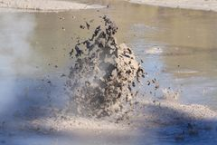 Boiling mud pool, Rotorua, New Zealand stock images
