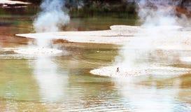 Boiling Mud Pool in Wai-O-Tapu Geothermal Wonderland, Rotorua, New Zealand.  stock photography