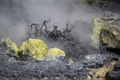 The boiling mud and sulphurous fumaroles at Mutnovsky volcano, K Royalty Free Stock Image