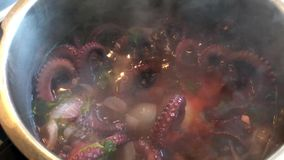 Boiling octopus in pot. Food stock footage