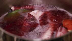 Boiling octopus in water with bay leaf stock video