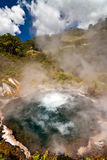 Boiling pool - New Zealand Stock Photo