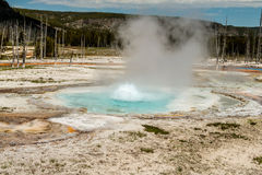Boiling Pool of Water, Yellowstone National Park Stock Image