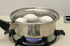 Boiling pot of eggs Stock Images