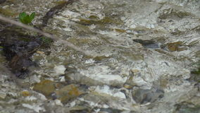 A boiling stream flows down the mountainside. Clear cold water moves quickly along the slope. The banks of the stream are overgrow. N with grass and trees. Wild stock video