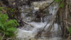 A boiling stream flows down the mountainside. Clear cold water moves quickly along the slope. The banks of the stream are overgrow stock footage