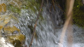 A boiling stream flows down the mountainside. Clear cold water moves quickly along the slope. The banks of the stream are overgrow. N with grass and trees. Wild stock video footage