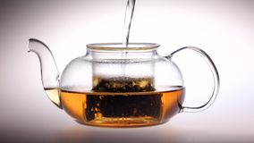 Boiling water is poured into glass teapot with tea leaves. Boiling water is poured into a transparent glass teapot with tea leaves, tableware mist over, studio stock video footage