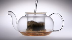 Boiling water is poured into transparent teapot with tea leaves stock video