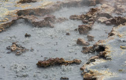 Boiling Water Spring Stock Photos