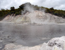 Boiling Water, Steam and Sulphur Gas, New Zealand. Boiling Water, Steam and Sulphur Gas, Hells Gate Thermal Reserve, New Zealand Stock Photo