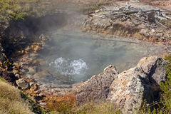 Boiling Water in a Thermal Pool Royalty Free Stock Photo