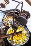 Boiling White and Yellow silkworm cocoons in the pot to make Silk Thread, Boil Silk Nest with Silk Reeling. In Thailand royalty free stock photos