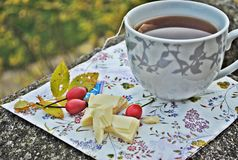 Boire de thé d'automne Photographie stock