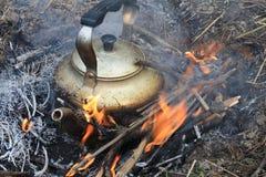 Boire du thé Photo stock