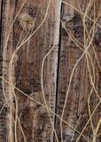 Bois âgé 3 de grange Image libre de droits