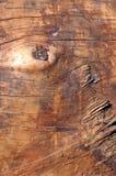 Bois Photo libre de droits