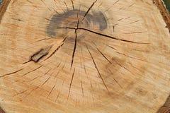 Bois Photographie stock libre de droits