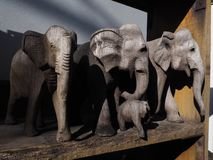 Bois abstrait d'éléphant photos stock
