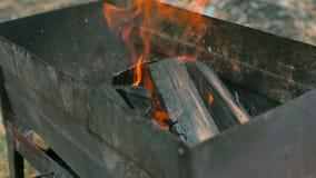 Bois brûlant dans le gril banque de vidéos