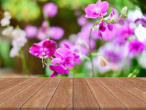Bois brun de perspective au-dessus de fleur de tache floue dans la forêt - peut être employé pour l'affichage ou le montage vos p Image stock