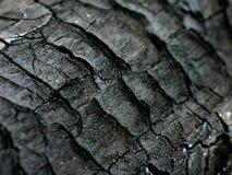 Bois carbonisé Photos libres de droits