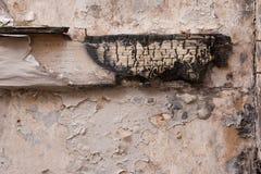 Bois carbonisé sur un mur de plâtre Photographie stock libre de droits