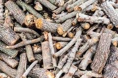 Bois coupé images stock