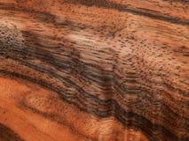 Bois d'ébène en bois Eben Makasar de placage en bois naturel Photo libre de droits