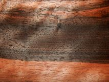 Bois d'ébène en bois Eben Makassar de placage en bois naturel Image libre de droits