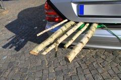 Bois d'incendie de bouleau dans un transporteur de bagage de véhicule à moteur Photographie stock libre de droits