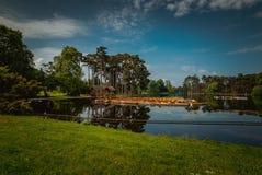 Bois de布洛涅 库存图片