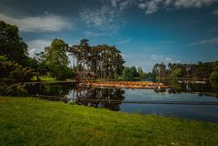 Bois de Boulogne Immagini Stock
