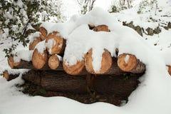 Bois de charpente de pile de log de neige en hiver photo libre de droits