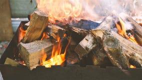 Bois de chauffage brûlant belle fumée Mouvement lent Plan rapproché clips vidéos
