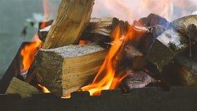 Bois de chauffage brûlant de chêne Plan rapproché Mouvement lent banque de vidéos