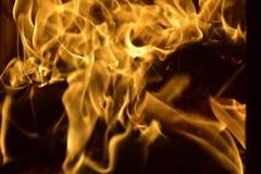 Bois de chauffage brûlant dans la cheminée Photos stock
