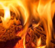Bois de chauffage brûlant dans le feu Photographie stock