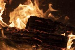 Bois de chauffage brûlant en flammes photos libres de droits