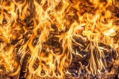 Bois de chauffage brûlant, flammes du feu images stock