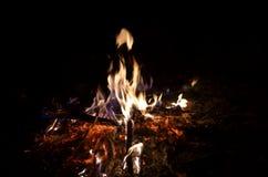 Bois de chauffage brûlant, nuit, plan rapproché Photos libres de droits