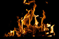 Bois de chauffage brûlant Image stock