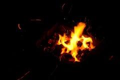 Bois de chauffage brûlant dans la fin de cheminée  Images libres de droits