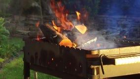 Bois de chauffage brûlant dans le brasero dehors banque de vidéos