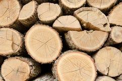 Bois de chauffage coupé et empilé pour la cheminée à la maison Photo libre de droits