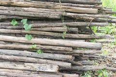 Bois de chauffage coupé sur une pile Photographie stock libre de droits