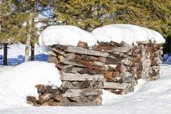 Bois de chauffage couvert par la neige en hiver Images libres de droits