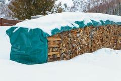 Bois de chauffage dans la neige Photos stock